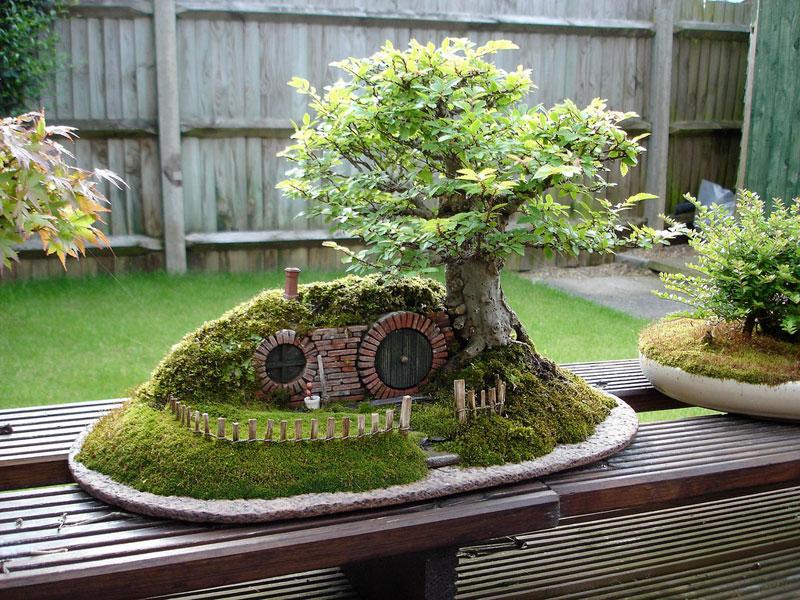 A Bonsai Tree in Space