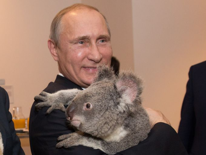 Koala diplomacy : Australian soft power saves the day at G20