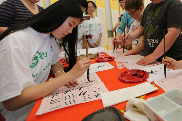 Senate Panel Takes Aim at China-Funded Education Programs in U.S.