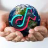 TikTok handbook for non-profits and digital diplomacy